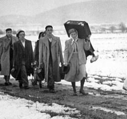 Idegenben magyarként  - Az 56-os emigráció emlékei