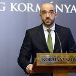 Kormányszóvivő: McCain nem igazán ismeri a magyarországi helyzetet