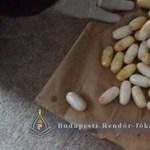 90 kokainkapszulával a gyomrában érkezett Magyarországra egy brazil drogcsempész – videó