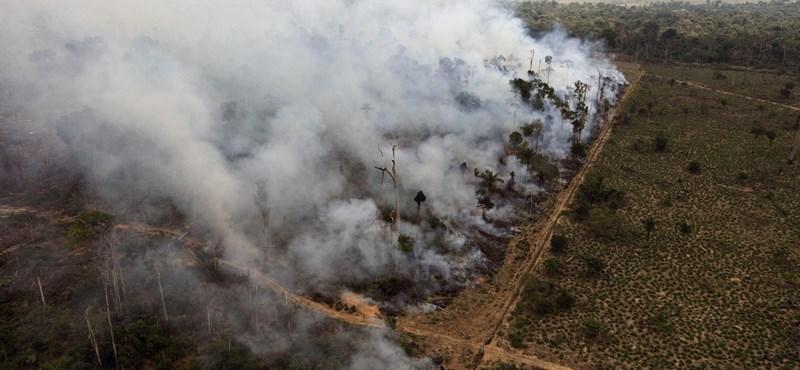 Az űrből is látszik, mennyire szennyezik a levegőt az amazonasi erdőtüzek