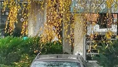 Fizetett, mégis jól meglepődött az autós, aki pénteken Kapuváron parkolt