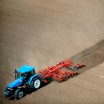 Európai non-profit agrárpiacot nyitottak magyar gazdák