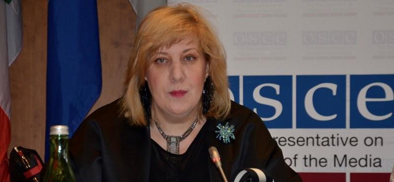 Kiosztotta Magyarországot az Európa Tanács emberi jogi biztosa