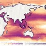 Sokkoló mennyiségű szemét úszkál az óceánokban
