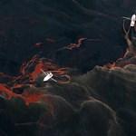 Leeresztették az újabb olajfogót a Mexikói-öbölben