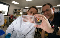 Reménymorzsa a gluténérzékenyeknek: segít a mesterséges intelligencia
