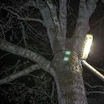 Banki segítséget kérhet Szombathely, hogy az Elios korszerűsíthesse a világítást