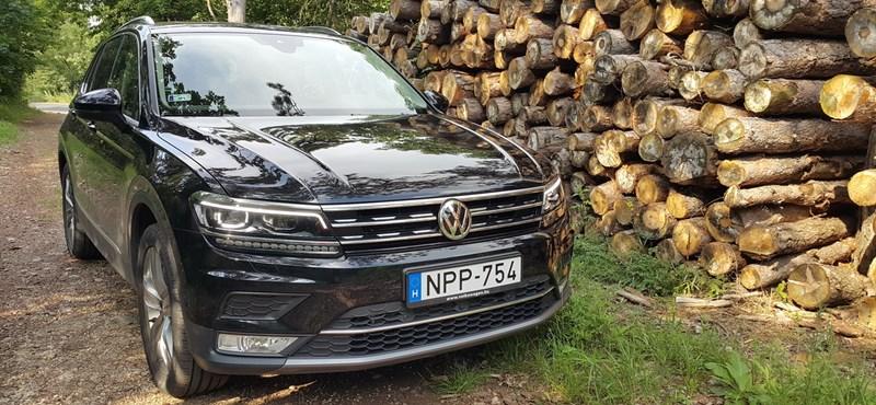 VW Tiguan-teszt: kicsit tigris, nagyon leguán