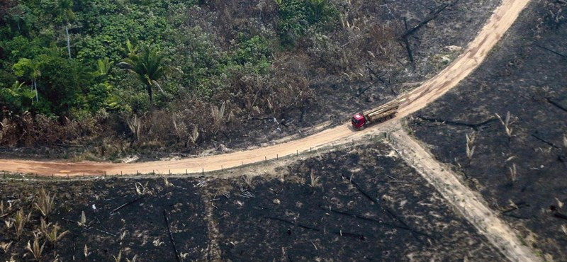 Tovább pusztít a tűz az Amazonas vidékén, Bolsonaro a civileket és a bennszülötteket okolja