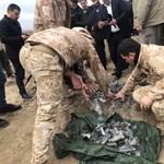 Mégis vannak amerikai sérültjei a múlt heti iráni légicsapásnak