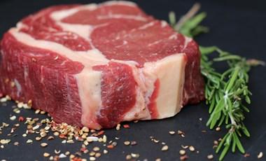 Az energián áll vagy bukik, környezetbarátabb-e a laboratóriumban növesztett hús
