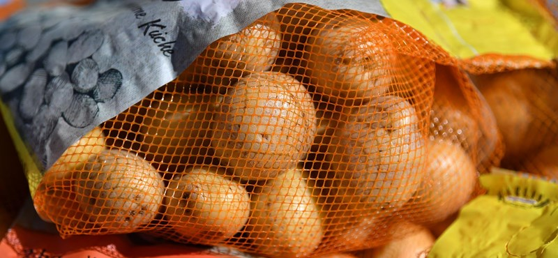 Lassan nem lesz hazai krumpli a piacon