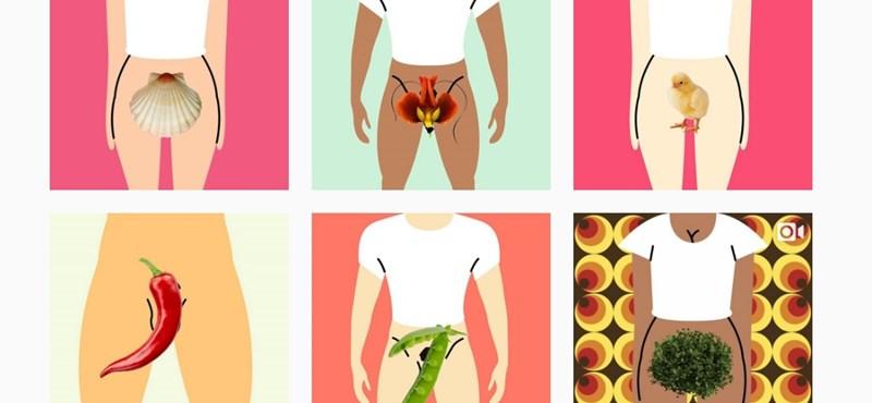 Itt most megnézheti, hogy ki hogyan becézi a nemi szervét