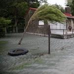 Halottja van a viharnak Belgrádban
