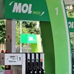 Lehet, hogy újra lesznek Mol-kutak Ausztriában