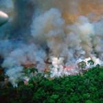 Amazóniai tüzek: 20 millió eurót szavaztak meg a G7-ek gyorssegélyként