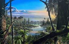 Nagyon régi esőerdő maradványaira bukkantak az Antarktiszon