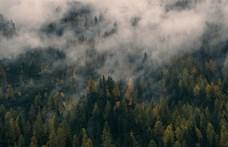 Baj van: a Föld nem tud olyan gyorsan alkalmazkodni, mint ahogy a klíma melegszik
