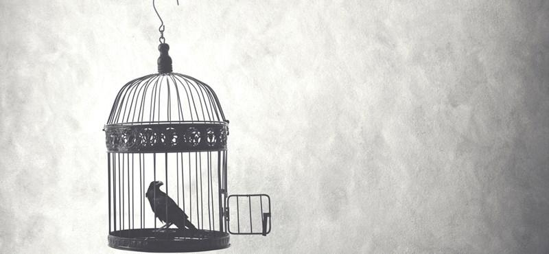 Belső szabadság: illúzió vagy valóság?