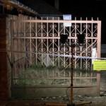 Megöltek és elástak egy 77 éves nőt Vámosmikolán