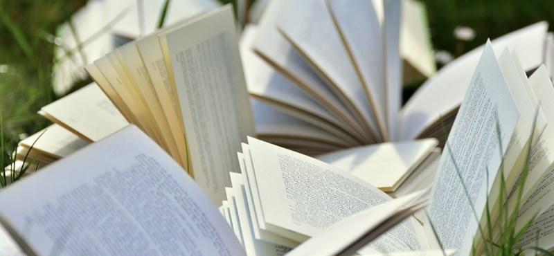 Zseniális műveltségi kvíz: újabb tíz tájszó, amit sokan nem ismernek