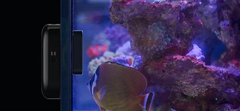 Van akváriuma? Akkor biztos nagyon fog tetszeni ez a szerkentyű