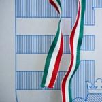 Magyar Autósokért, NEM – ilyen pártok is indulnak a választáson