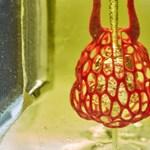 Orvostudományi áttörés: véredényeket és légutakat nyomtattak tudósok