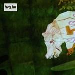Videó: 3D-ben kelt életre a hvg rajzolt vízilova