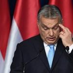 Nem tetszett a Ludwig igazgatójának, hogy titokban egy Orbán-portré került a múzeumba