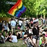 Elítéltek egy 2014-es Pride-résztvevőt