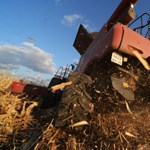 Fokozza a károsanyag-kibocsátást a mezőgazdasági célú földhasználat növelése