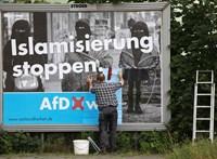 Vizsgálják a német szélsőjobbos AfD-t, hogy nem a demokratikus rend ellen irányul-e