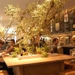 Novemberben nyit az új Vapiano a MOM Parkban