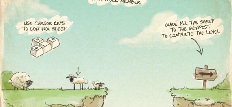 Napi munkakerülő – a bárányok nem hallgatnak