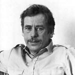 Szolidan dicsérik Havel első filmrendezését