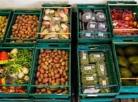 6,5 milliárd forint értékű élelmiszert mentett meg tavaly az Élelmiszerbank