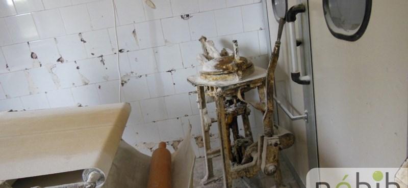 Omló vakolat, penész – III. kerületi pékséget záratott be a Nébih