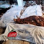 Szíriai ellenzék: gáztámadásban haltak meg százak Damaszkuszban