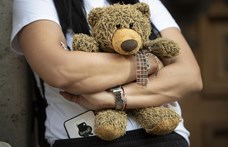 Bíróság mondta ki: nem sértenek személyiségi jogokat a pedofilvadászok