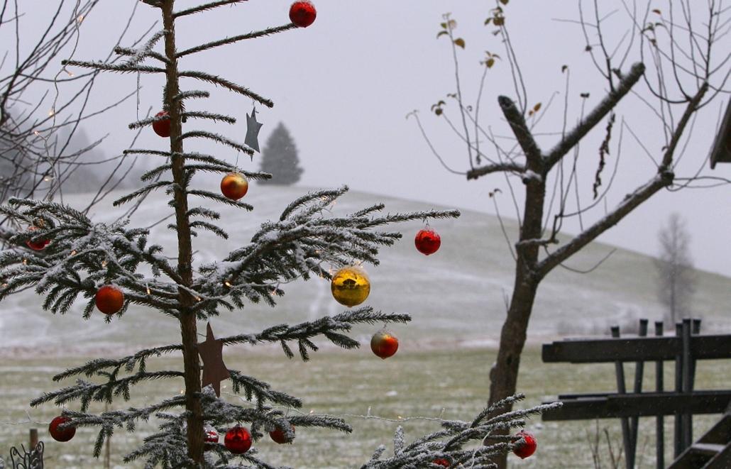 afp. hét képei - Unterjoch, Németország, 2014.12.08. A festively decorated Christmas tree standing in a farm's garden is slightly covered in snow near Unterjoch, southern Germany, on December 8, 2014.
