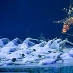 Gigantikus csodaszarvas és cirkuszi show zárta a vizes vb-t