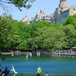 Városi dzsungelek – a legérdekesebb parkok New Yorkban (videók)