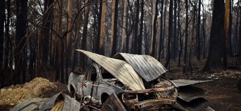 Trópusi ciklon segíthet az ausztrál erdőtüzek oltásában