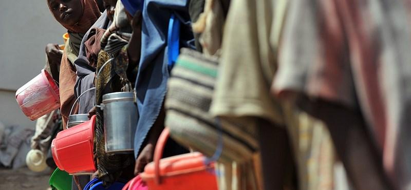 Az emberiség 11 százaléka éhezik