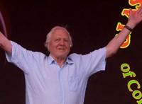 David Attenborough Guinness-rekordot döntött az Instagramon
