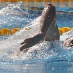 Eddig egy magyar döntős, két elődöntős az úszó-Eb hétfői napján