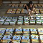 Így küzdenek a magánkiadók: továbbra is elérhetőek a tankönyvjegyzékből eltávolított köteteik