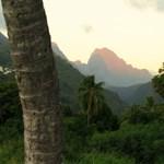 Visszaszökött a vadonba a kambodzsai dzsungelnő