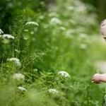 A boldog gyerek haragudhat, ha dühösnek érzi magát